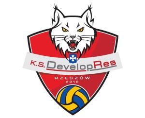 Developres logo 2018